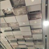 Het hoogwaardige Aangepaste Artistieke Plafond van het Aluminium voor Decoratief Hotel