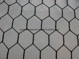 Het hexagonale Opleveren van het Netwerk van de Draad van het Vogelhuis van de Vogel van de Kip