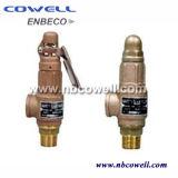 Valvola limitatrice della pressione con la valvola di sicurezza aperta o vicina del cofano