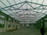 Het Dak van de Workshop van de Structuur van het staal (ssw-146)