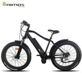 Motor impulsor central del neumático gordo eléctrico de la bici de la suciedad