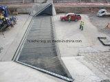 De Professionele Fabrikant van Qingdao van RubberBlaas
