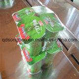 Máquina de empacotamento do Shrink do biscoito (SFR 450)