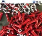 Us Federal Especificación Drop Forged G210 Dee Shackle-Rigging Hardware