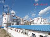 Здание завода фабрики стальной структуры Prefab