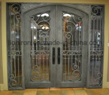 最も普及したデザイン古典的な鉄の出入口