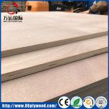 Folheado da classe da mobília de E1 E2/madeira compensada comercial laminada melamina do Poplar