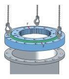 Engranaje externo 21 del rodamiento de la placa giratoria del rodamiento del anillo de la matanza de Rollix 0841 01