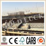 Contre-plaqué imperméable à l'eau de construction de matériau de construction