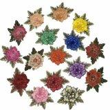 Mais correção de programa do bordado das flores das cores para a decoração