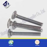 中国製ステンレス鋼のステップボルト(304)