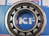 Het cilindrische Lager van de Rol SKF Nu215ecp kiest het Lager van de Rol van de Rij uit