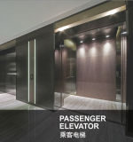 Elevatore esponente al sole sicuro e liscio del passeggero