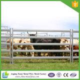 Comitato dei 5 della barra del bestiame bestiame della guida 1.6m un alto per bestiame
