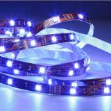 Luz de tira al aire libre de la flexión de 5050 SMD LED