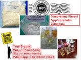 Polvo sin procesar de Phenylpropionate del Nandrolone de la alta calidad del 99% con salida segura