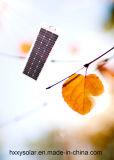 Excellente lumière solaire solaire actionnée toute de jardin de la lumière 6W dans une