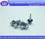 China-Hersteller-niedriger Preis-Maschinen-Schraube