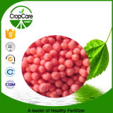 Nitrogênio revestido do ácido Humic do Urea do enxôfre com alta qualidade
