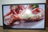Aula 55inch Touch Screen Monitor con Factory Price