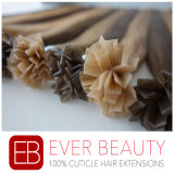 高品質はインドの人間のバージンの自然な毛の拡張をVひっくり返す