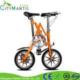 14 Zoll-einzelne Geschwindigkeits-faltendes Stadt-Fahrrad-Aluminiumlegierung-faltendes Fahrrad