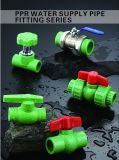 PPR Pipes y Fittings (Cold y Hot Water Supply)
