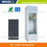 Congelador solar do congelador do refrigerador de 12 volts