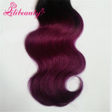 Ombre 색깔 Malaysian 사람의 모발 바디 파 20inches
