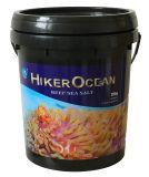 하이커 대양 암초 바다 소금 바다 바다 소금