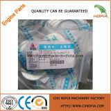Motores diesel de calidad superior de Xinchai