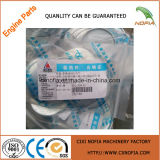 Motores Diesel de Xinchai da qualidade superior