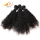 熱い販売のRemyの毛の拡張ジェリーのカール自然なカラーマレーシア人の毛