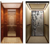 Good Quality Competitive Price를 가진 아름답게 Decorated Home Elevator