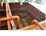 350pcs / H - Bandeja de huevos / Papel 2500pcs H Hacer / que forma la máquina