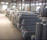 工場販売のチェーン・リンクの塀または鎖の鉄条網か、またはダイヤモンドの金網