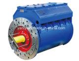 Motore Trifasico 380V-3300V De Sheel De Acero De La Anti-Explosion