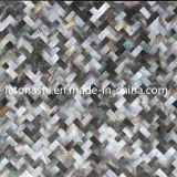 Natürlicher Steinshell-Mosaik-Marmor