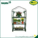 Onlylife faltbare leicht zusammengebaute transparenter Garten-landwirtschaftliche Gewächshäuser