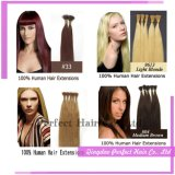 Extensão de cabelo humano de queratina italiana Cabelo de queratina