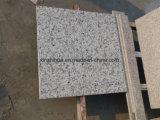 Weiße Granitfliese/Platte/Countertop China-Bala