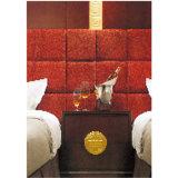 Het eenvoudige Meubilair van de Slaapkamer van het Hotel van de Stijl Standaard