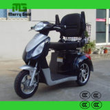 Tricycle électrique 500W de portée de chanteur avec le panier arrière