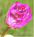Heißer Verkaufs-Kristall macht Glasrosen-Blume in Handarbeit