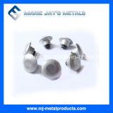Hartmetall-Nagel mit dem Hochleistungs- hergestellt in China