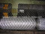 직류 전기를 통하고 PVC 입히는 6각형 철사 최신 복각 그물세공