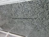Гранит Tiles&Slab Китая зеленый, зеленый гранит для верхней части Countertop&Vanity