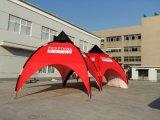 عنكبوت [إإكسبو] يفرقع خيمة لأنّ حادث فوق قوس خيمة