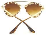 Le plus défunt type d'Elegent en verre de Sun de femmes de lunettes de soleil d'année neuve du modèle F17091
