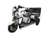 最上質500W 60V 3の車輪の電気人力車の三輪車